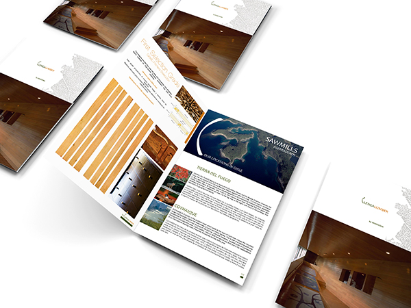 Identidad Corporativa / Web / Material Promocional