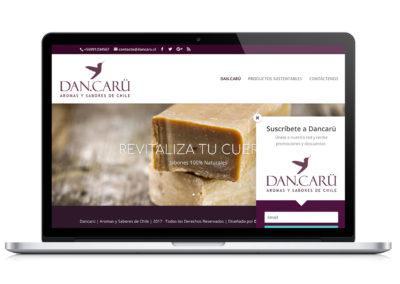 Cliente DANCARU, Identidad corporativa, desarrollo web y desarrollo de productos