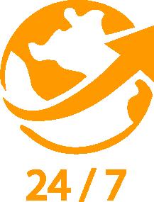 comercio electrónico 24/7 global